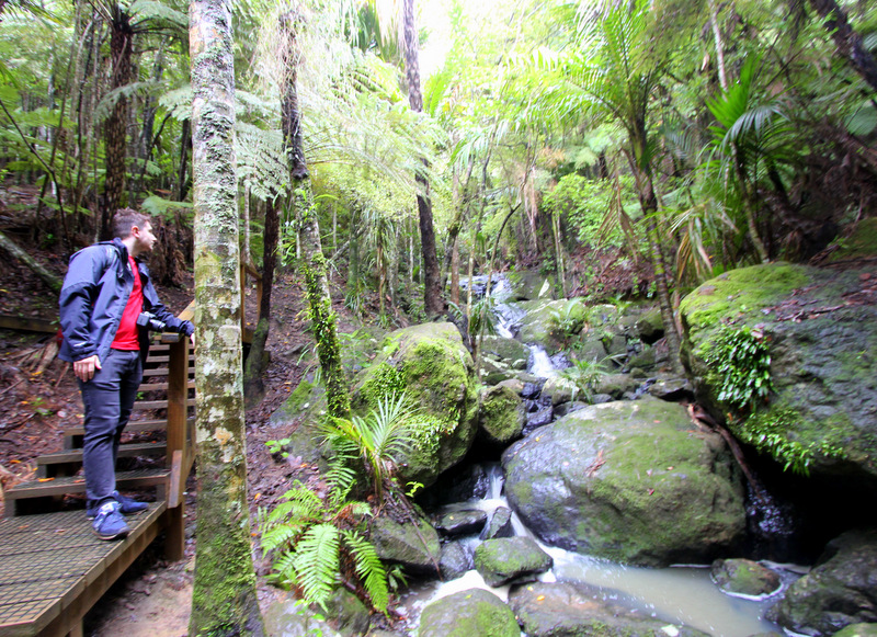 The Cascades, Whakanewha Regional Park