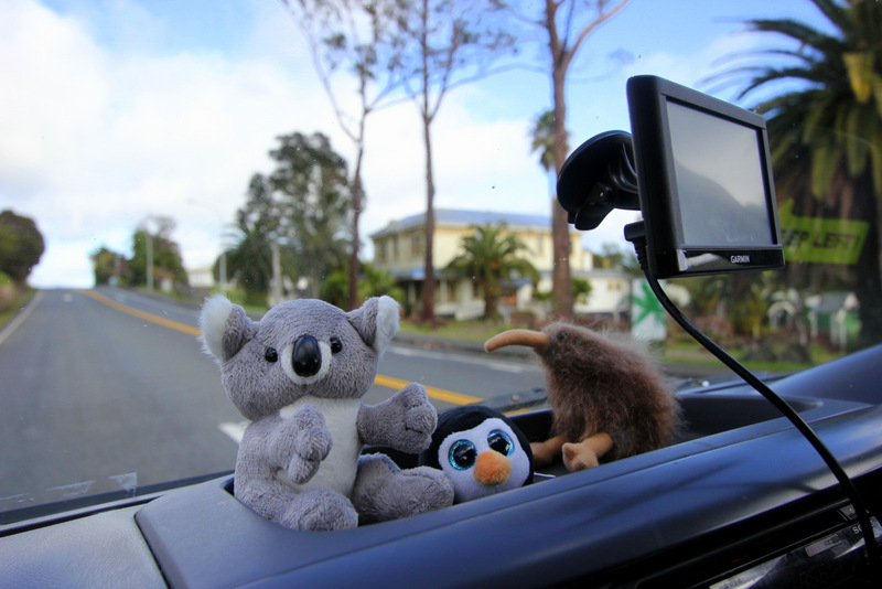 Dashboard buddies