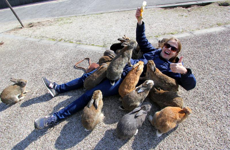 Rabbit Island, Japan