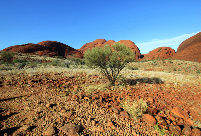 View of Kata Tjuta