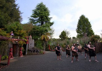 An authentic cultural evening at Tamaki Maori Village