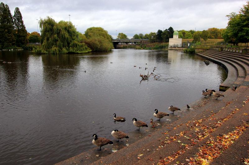Walking in Derby