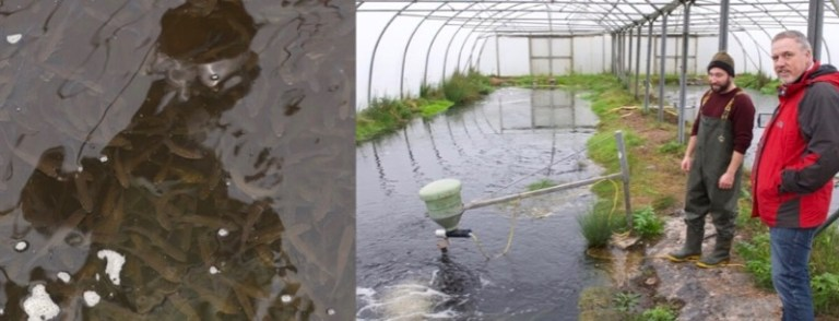 Stock pool hatchery fish farming Environment Agency
