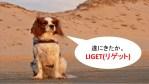 LINE@ASPツール「LIGET(リゲット)」