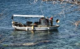 Savudrija la pesca con la rete