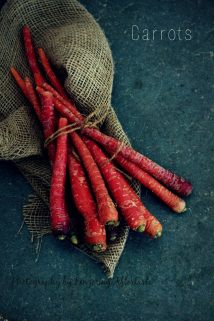 Carrots - style 1