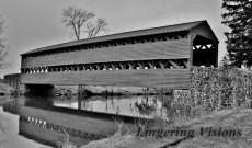BnW Bridges(w)#(22)