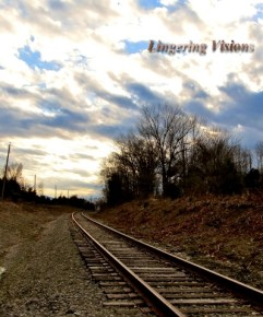 Curves of a train track(w)# (14)