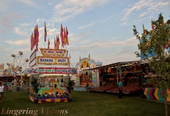 Funnel cakes, cotton candy, and caramel apples; fair food at its finest.