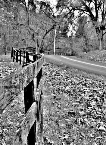 Fences in Black and White(e)# (3)