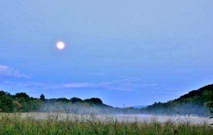 The Moon Over the Mist