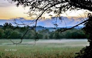Sunset Under the Mist Filled Field