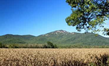 old-rag-over-the-cornfield