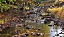 sc-creek
