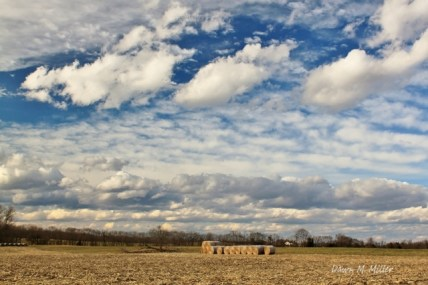 hay-bales-stacked-in-the-hay-field