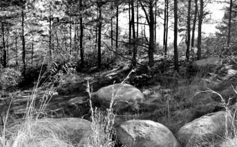West Virginia rocks