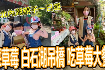 [內湖]台北親子採草莓 白石湖草莓園 白石湖吊橋 夫妻樹 同心池 台北一日輕旅行