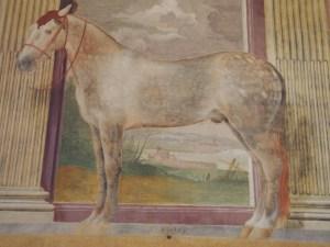 描かれている馬のサイズは実物大らしい。高い位置にあるのでそんなカンジしない。