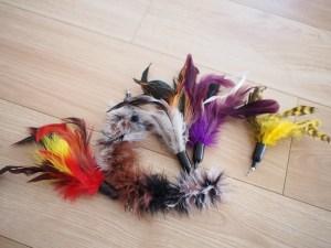 猫じゃらしの羽根