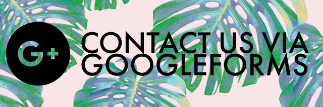 Lingua Fox Google