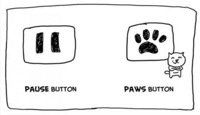 Омофоны в английском - pause - pows
