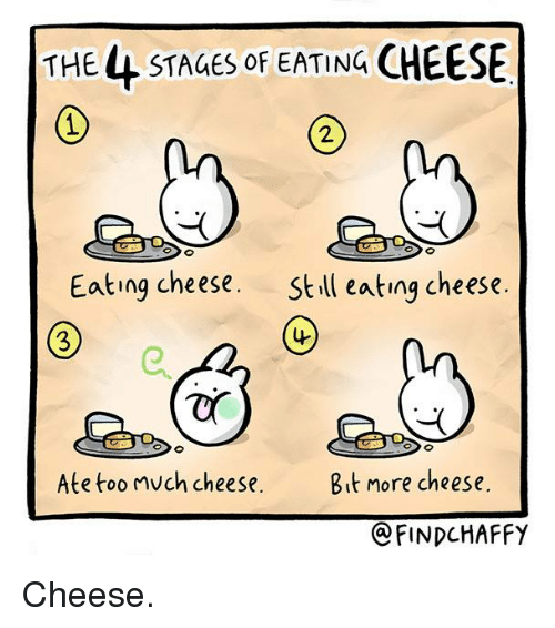 the-4-stages-of-eating-cheese-eating-cheese-still-eating-2554308