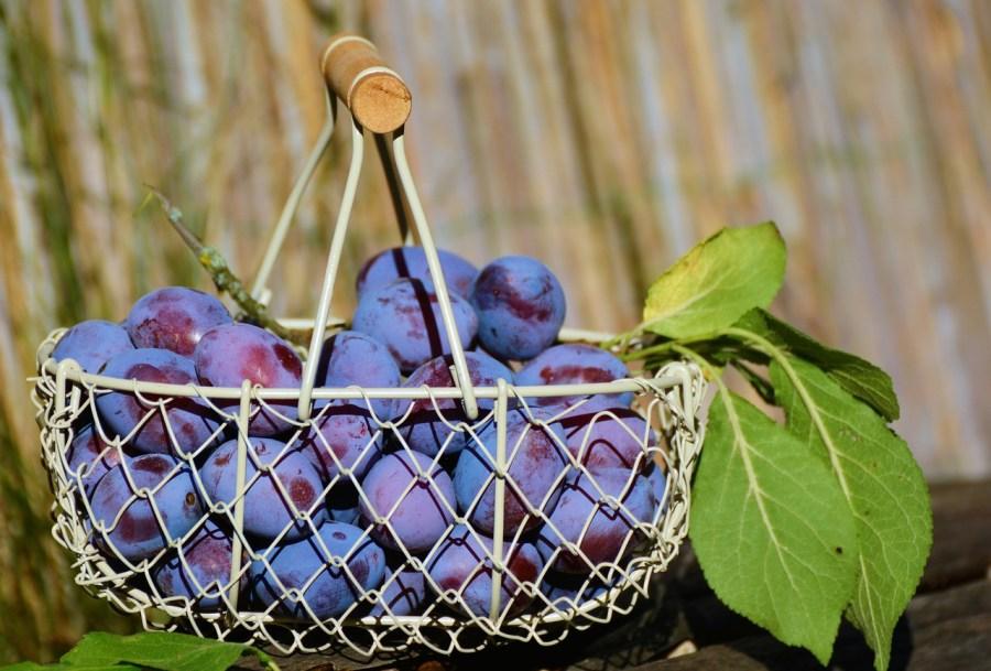 plums, fruit basket, fruit