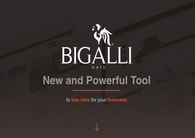 BIGALLI-LANDING