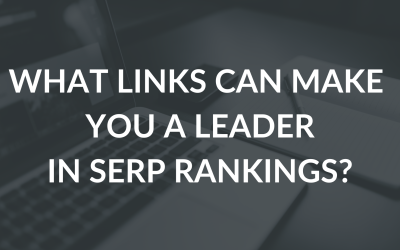 What links will help us become the leader of our industry in SERP rankings?