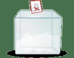 election photo