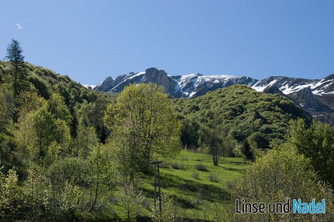 Piemont_130529_014