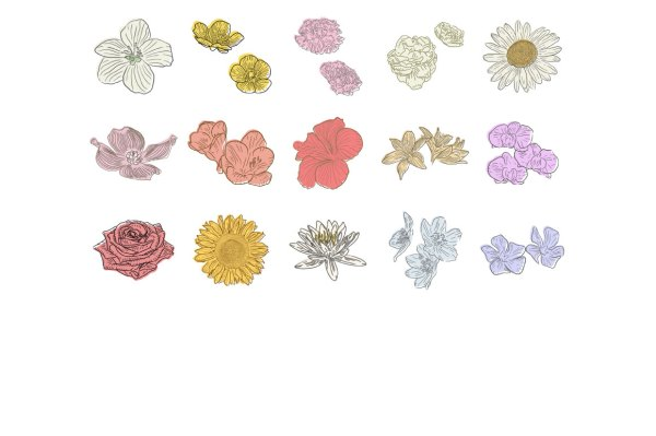 Hand Drawn Flowers 3