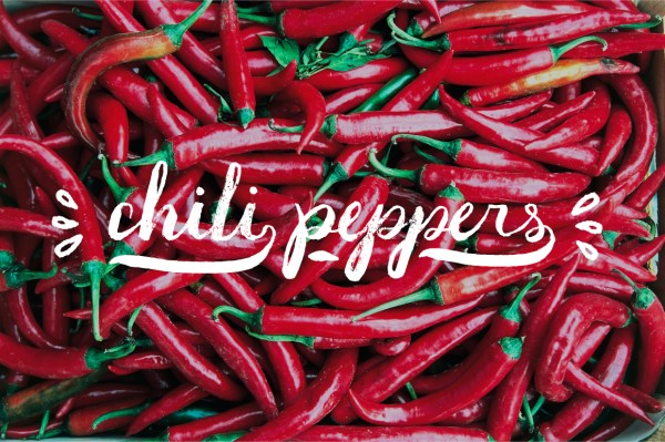 herb & spices text overlays