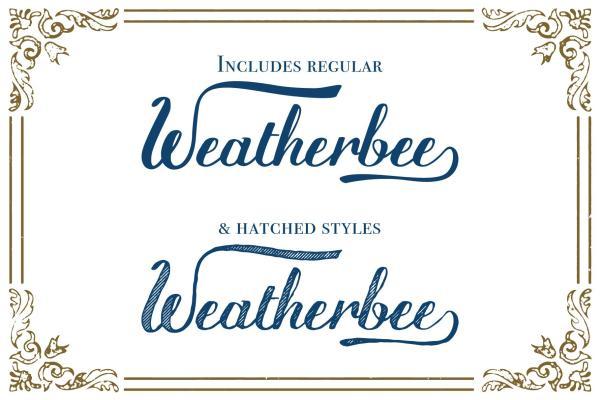 Weatherbee Script Font_Preview 8
