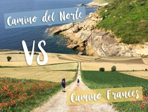 Camino del norte ou Camino Frances
