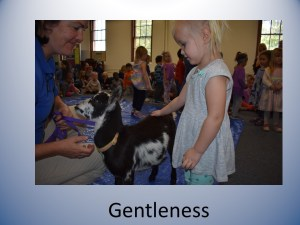 Slide9 1 - Gentleness