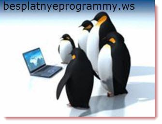 Linux: программы первой необходимости