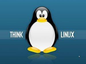 На сегодняшний день численность пользователей, которые отдали предпочтение операционной системе Линукс, огромна. Но есть и такие люди, которые не могут определиться. Для того чтобы им проще это было сделать, им следует изучить несколько моментов.  Отсутствие вирусов. На данный момент для операционной системы Линукс практически не пишут вирусов и вредоносных программ. Обусловлено это тем, что численность дистрибутивов огромна. Поэтому подготавливать вирусы бессмысленно. Возможность выбора подходящего дистрибутива. Программистами разработано множество дистрибутивов, каждый из которых имеет свои особенности, а также сильные и слабые стороны. Поэтому каждый пользователь может выбрать тот вариант, который ему идеально подходит. Экономия. Для того чтобы воспользоваться данной операционной системой, не нужно платить. Все потому, что необходимые для установки компоненты находятся в свободном доступе. Для того чтобы их скачать, необходимо посетить соответствующий портал. В процессе установки в обязательном порядке нужно следовать инструкции, которая подготовлена опытными программистами. Возможность внесения коррективов. Благодаря тому, что каждый пользователь может настроить операционную систему, проблем с использованием не будет. При этом сделать это несложно, если принимать во внимание несколько значимых моментов. Возможность установки на различные компьютеры. Операционная система может быть установлена практически не любой компьютер. Но для этого необходимо с особой тщательностью выбирать дистрибутив. Ведь их численность действительно огромна.  Таким образом, чтобы воспользоваться всеми преимуществами операционной системы Линукс, нужно во внимание принимать огромное количество моментов и аспектов.