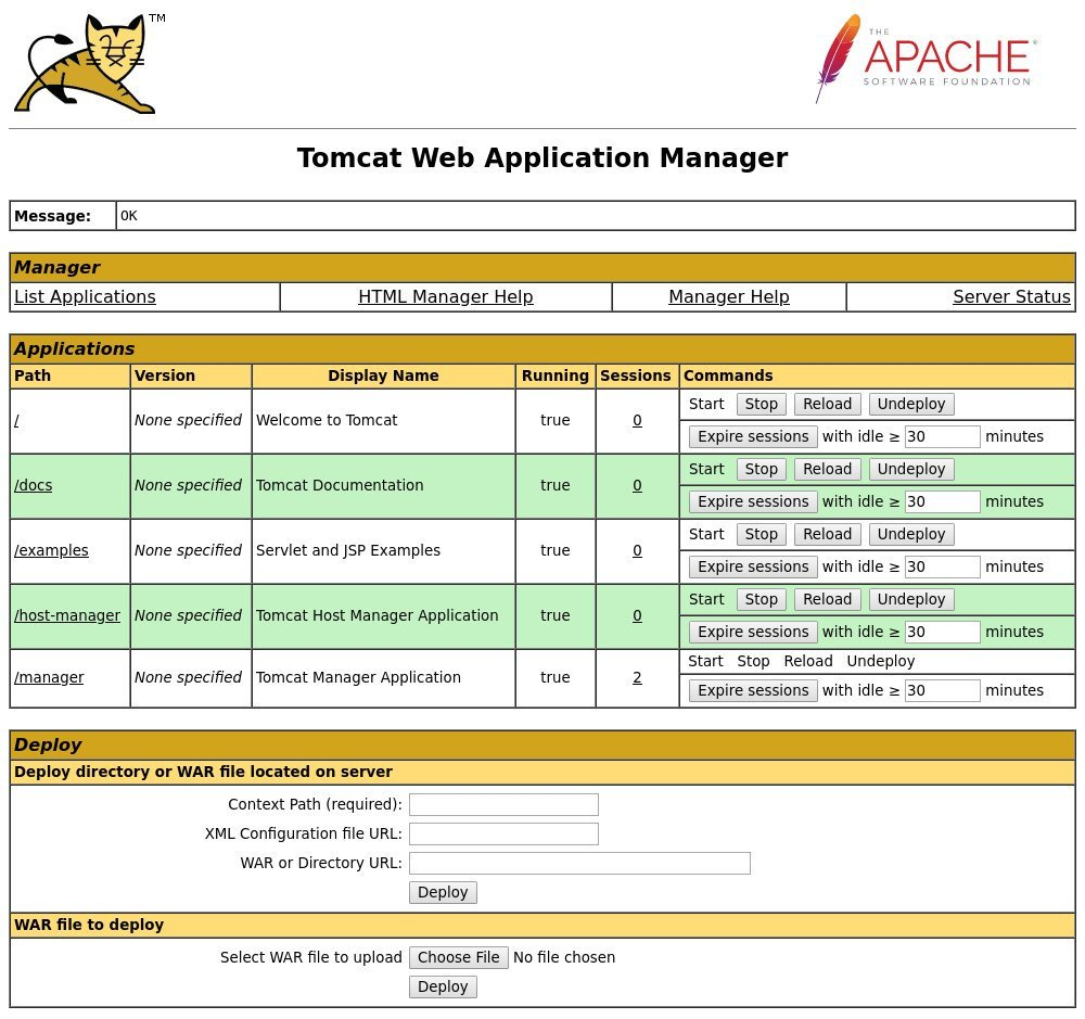 Tomcat Security Manager 85