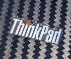 Thinkpapa T400 + Mint 20.2