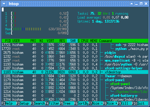 htop real time cpu analyser