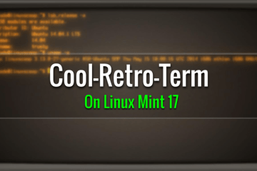 install cool-retro-term in linux mint 17