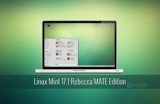 linux mint 17.1 mate