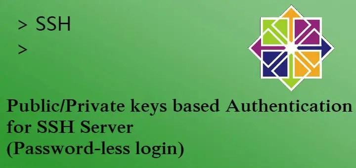 Public/Private keys authorization for ssh server