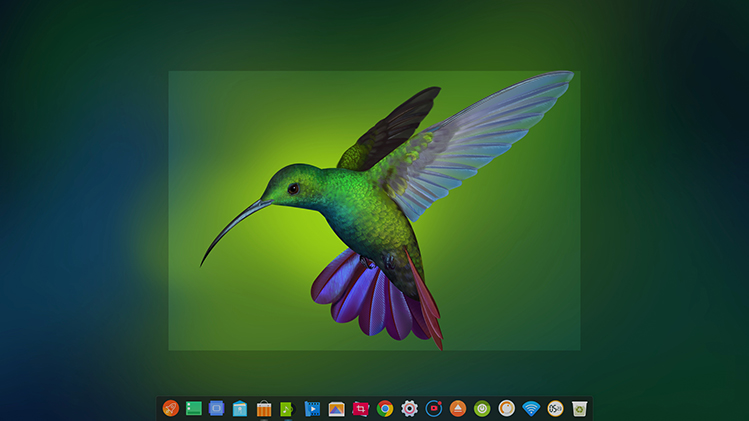 deepin screen recorder