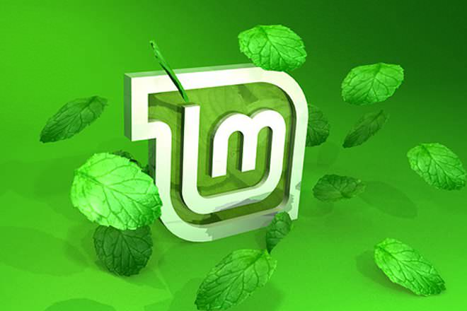новое имя linux mint 19