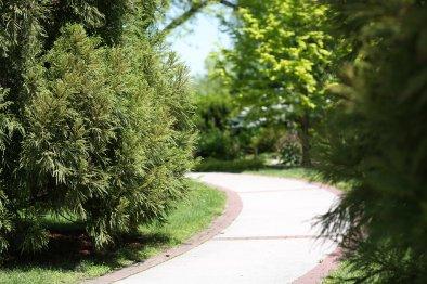 Linwood NJ Arboretum