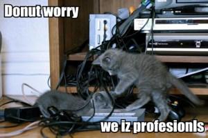 lolcat-professionals