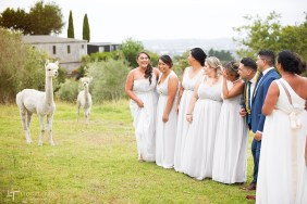 auckland wedding photography lavender hill kumeu
