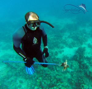 The author freediving for lionfish in Barbados